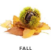 selector-fall