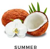 selector-summer